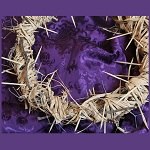 crown of thorns x150